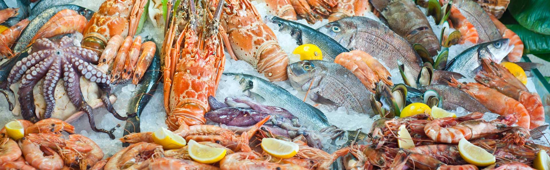 Морские рыбы рыба-меч рыба-молот ставрида 1 сельдь